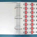 Item# 63-8257  Safeguard Match Alpha Label Set – Ringbook