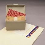 Item# 63-8215  Top Tab Numeric Starter Set