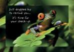 Item# RC121  Frog Checkup Recall Postcard
