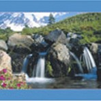 Item# RC130  Waterfall Recall Card