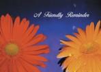 Item# RC138  Daisy Reminder Postcard