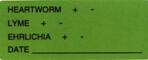 Item# V-AN296  'Heartworm/Lyme/Ehrlichia/Date' Label