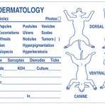 Item# V-AN639  Dermatology Lesions Exam Label