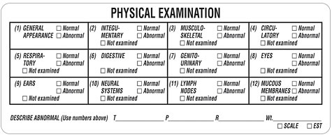 Item V An319 Physical Exam Label